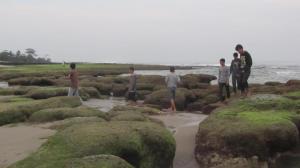 Menysusri karang